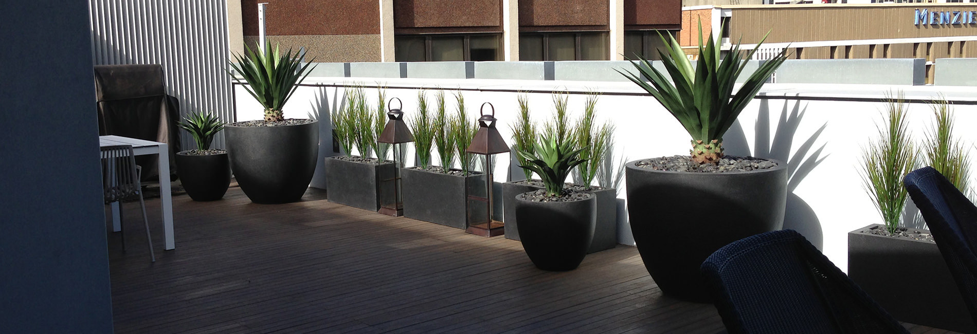 Greenery Designs Artificial Plant Landscapers Sydney Nsw